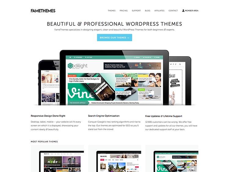 FameThemes WordPress Theme Free Download