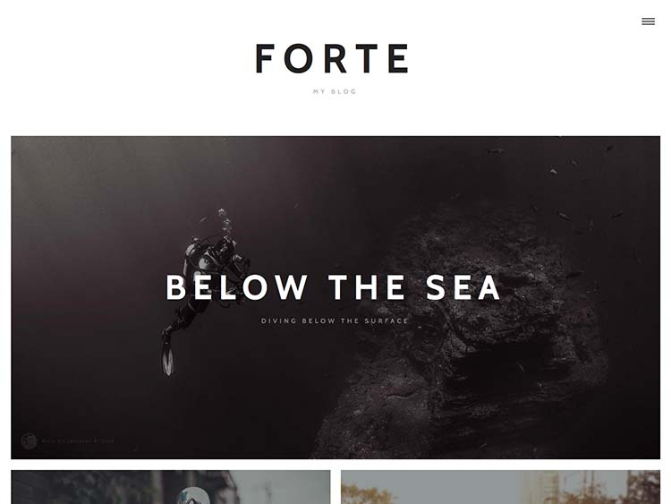 Forte WordPress Theme Free Download