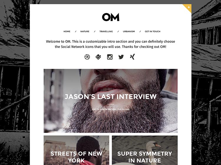 OM WordPress Theme Free Download